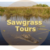 Sawgrass Tour Packages - Ace Tours